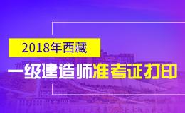 2019年西藏一级建造师准考证打印时间及入口
